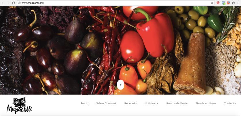 screenshot sitio web de Mapachtli