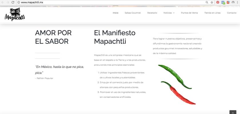 Screenshot sitio web Mapachtli